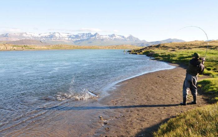 Straumar í Borgarfirði