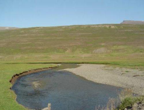 Laxá í Skefilsstaðahreppi