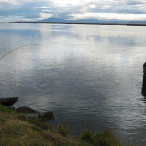 Veiðileyfi á Borgarsvæðinu