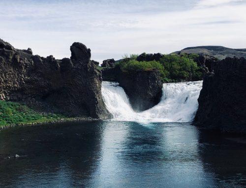 Fossá – laxinn að sýna sig í Fossá
